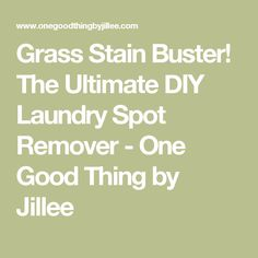 Grass Stain Buster! The Ultimate DIY Laundry Spot Remover - One Good Thing by Jillee