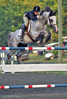 only those who have jumped horses will understand the power beneath them as they soar. Such a great feeling!