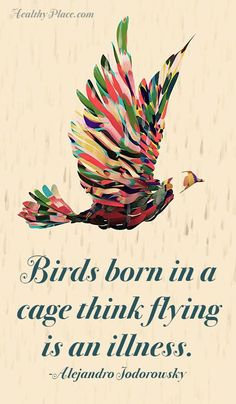 Positive Quote: Birds born in a cage think flying is an illness… Great Quotes, Quotes To Live By, Me Quotes, Motivational Quotes, Inspirational Quotes, Bird Quotes, Quotes About Birds, Note To Self, Inspire Me