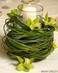 Pieza central  follaje orquideas cilindro con velas