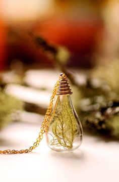 Botanical specimen necklace real plant by RubyRobinBoutique