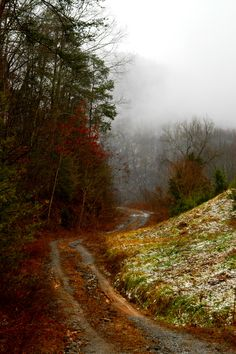 Breathtaking view on an old road in the Smoky Mountains.