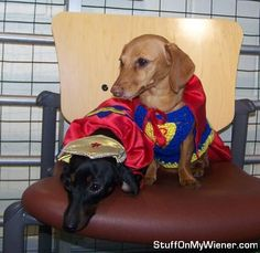 Dolly (Wonder Woman) and Brandee (Supergirl) take a break after a stressful day of saving the world.