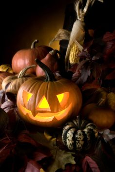 For altar decoration, Jack-o-lanterns, gourds, and autumn foliage are ideal, as are the barks of trees that are awake (non-deciduous/native Australian trees), and the resins and oils of trees that are awake during this time of the year.