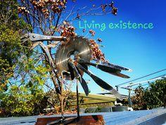 Estelle flying free #livingexistence