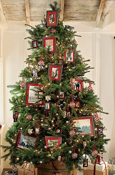 Family Christmas Tree...with framed family photos displayed on the tree.   By PB.  Picture only for inspiration.