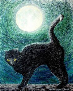 Le chat noir, une créature mystérieuse et diabolique | Entouré d'une aura de mystère, le chat noir, aux yeux luisants comme des diamants, est un animal maléfique qui se déplace avec aisance dans les ténèbres. Doué de pouvoirs magiques, il possède neuf vies et conspire avec le diable. Créature de mauvais augure et compagnon des sorcières, il fait l'objet de croyances particulières... zimzimcarilloncanalblog.com | A Black Cat by Jahn Henne