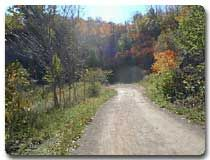 Come Explore Hamilton's Trails!  There are many wonderful trails in the City of Hamilton for both the serious hiker as well as for those who wish to enjoy a leisurely afternoon outside.  Our trail pages provide information on local area trails, as well as trail links to long distance trails such as the Bruce Trail and Trans Canada Trail.