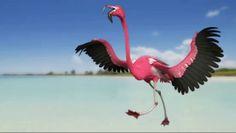 Flamingo Rig in Maya
