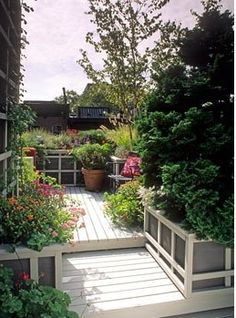 Small urban roof garden with decking area and raised beds and containers of Chrysanthemum, Salvia, grass, Sedum and Betula. Wooden bench with cushion - New York USA Eco Garden, Dream Garden, Garden Ideas, Deck Fire Pit, Concrete Deck, Decking Area, Outdoor Fun, Outdoor Decor, Fresco
