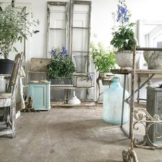 #showroom on #monday #restyling a bit with #plants and #flowers. #vintage #blue #antiques #antiquites #shabbychic #creating #decor #ambiance