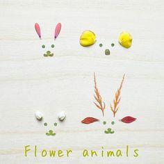 * * 可愛い動物たちを作ってみました 左上から、うさぎ、コアラ、くま、しか  シカの角は、もじみなんです❣️ 名前は忘れましたが…珍しいもみじですよね〜✨ クマとシカの耳は、ドウダンツツジの葉っぱと花びらで作りました 今日も、いい天気☀  素敵な一日を~ * I tried making cute animals.  From the upper left, a rabbit, a koala, a bear, a deer.  The horn of deer is 'maple' !! Bear and deer ears were made with leaves and flower petals of Enkianthus perulatus. * #絵 #うさぎ#コアラ#鹿#くま #ワークショップ#絵本#ポストカード  #искусство#deco #thehappynow#thatsdarling #pursuepretty  #leafart #petitejoys#dscolor#creativelifehappy...