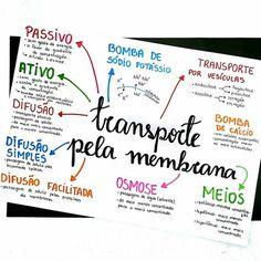 ◾Resumo de biologia sobre transporte pela membrana. . . . . . ◾Até pensei em fazer esse resumo separado, com um para transporte ativo e…