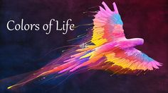 Colors of Life Quotes - YouTube