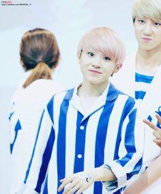 Little pink fairy cinnamon roll #Woozi #Jihoon #Seventeen