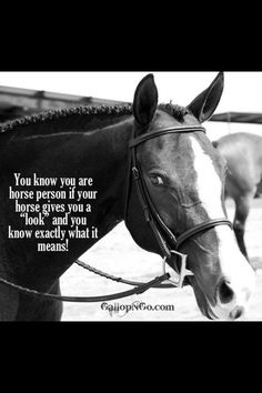 "You know you are a horse person if your horse gives you a ""look"" and you know exactly what it means!"