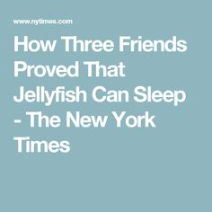 How Three Friends Proved That Jellyfish Can Sleep - The New York Times
