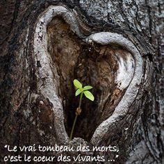 #CITATION SUR L'ESPOIR APRES LA MORT# Le vrai tombeau des morts, c'est le coeur des vivants... QUOTES#