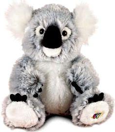 Webkinz Plush Koala Bear. I have it. Named him Mr. Cuddles