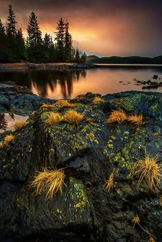 Sunset, Ketchikan, Alaska (Photo By Carlos Rojas).really want to go there someday Foto Nature, All Nature, Amazing Nature, Beautiful World, Beautiful Places, Beautiful Pictures, Landscape Photography, Nature Photography, Nature Scenes