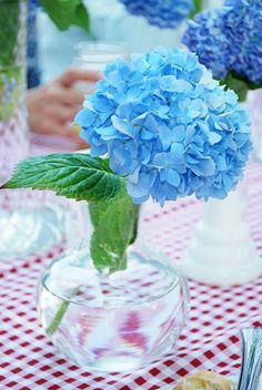 Group tiny vases wit