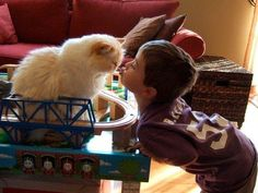 Best friends: Photos of your pets and kids sharing the love - Animal Tracks