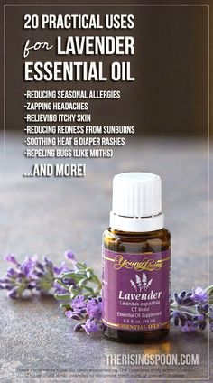 20 Practical Uses For Lavender Essential Oil + a GIVEAWAY for a 5-mL bottle of YL Lavender oil | therisingspoon.com -- Lavender essential oil is truly the SWISS ARMY KNIFE of EOs. It has SO many uses and is indispensable to have around the home in first aid situations, not to mention its amazing calming effects. Even better, it's kid friendly! PIN NOW and READ LATER! #essentialoils #holistic #remedies #healthy #frugal #thrifty #diy