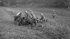Traction, Cannon, Guns, Germany, Army, Painting, Weapons Guns, Gi Joe, Military