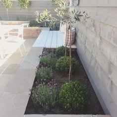 41 Small Garden Ideas For Tiny Outdoor Spaces – Wonderfulbackyard Back Gardens, Small Gardens, Outdoor Gardens, Fresco, Small Yard Design, West Facing Garden, Backyard Ideas For Small Yards, Mediterranean Garden, Garden Projects