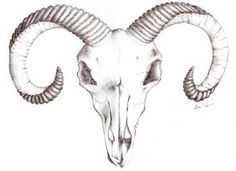 Goat_skull_tattoo_by_murderingdoll.jpg (300×218)