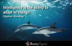 Intelligence is the ability to adapt to change. - Stephen Hawking  #change #brainyquote #QOTD