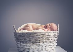 Newborn Boy - Family Portrait ©becphotography