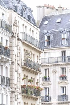 The beautiful balconies of Paris. #paris #architecture #frenchdecor Paris Home Decor, French Home Decor, Paris Architecture, Iron Balcony, Paris Images, Fine Art Photo, Window Boxes, Large Wall Art, Image Shows