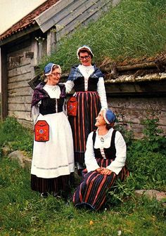 Halland, Viske härad (Värö socken). Folk Costume, Costumes, Daily Dress, Traditional Outfits, Ethnic, Fashion Dresses, Culture, Clothing, How To Wear