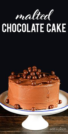 """This Malted Chocolate Cake makes a """"whopper"""" chocolate cake recipe perfect for celebrating all sort of occasions - or just because! // addapinch.com"""