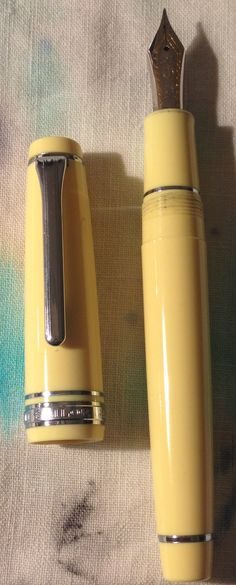 Sailor fountain pen. One of my personal favorite brands...