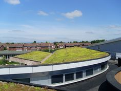 A sedum roof on a school that wanted to improve its environmental ratings