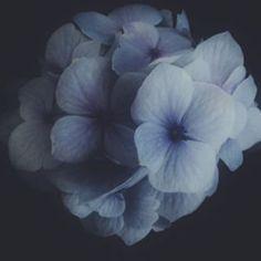 @sunday_722 Instagram photos | Websta (Webstagram)