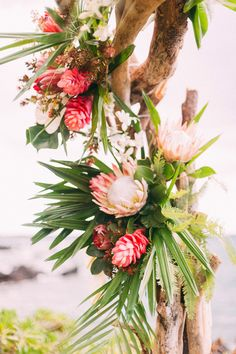 Driftwood arch decor with protea, ginger, and greens Protea Wedding, Floral Wedding, Wedding Bouquets, Wedding Flowers, Flower Bouquets, Tropical Wedding Decor, Beach Wedding Decorations, Wedding Ideas, Wedding Planning