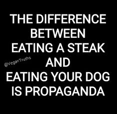Defend Animals · PETA-Approved Vegan T-Shirts & Cruelty-Free Clothing for anima. - Defend Animals · PETA-Approved Vegan T-Shirts & Cruelty-Free Clothing for animal rights activists - Vegetarian Quotes, Vegan Quotes, Vegan Facts, Vegan Memes, Peta, Steaks, Cake Vegan, Why Vegan, Visual Statements