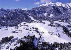 Zima, Alpy, Lasy, Dolina, Wioska