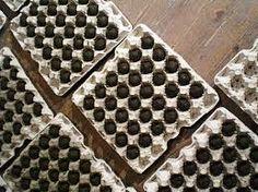 Bildergebnis für masanobu fukuoka seedballs Masanobu Fukuoka, Animal Print Rug, Rugs, Home Decor, Farmhouse Rugs, Interior Design, Home Interior Design, Floor Rugs, Rug