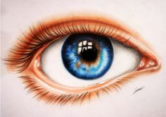 Polaara – Subtly colored eye drawing. Note how the iris is two-colored.  - Eyes are the windows to the soul. There's no person in the world who doesn't know this common wisdom, which is actually quite true. Eyes are the most expressive part of the human face, they reveal our feelings and our state of spirit. If we tell lies, eyes can reveal the truth, if we feel happy, eyes start to glow. Besides the myriad of idioms, poems, songs dedicated to the beautiful human eyes, visual arts have been…