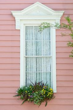 Charleston, SC Window box planting: