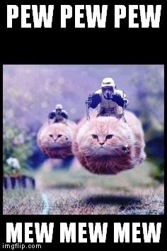 In honor of Caturday, I present to you: Flying cat and Stormtrooper.