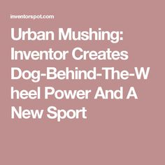 Urban Mushing: Inventor Creates Dog-Behind-The-Wheel Power And A New Sport