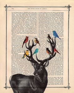 Sweet Deer Print on an Antique Book Page.