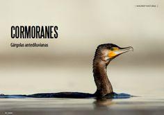 Es Madrid no Madriz Magazine Madrid, Natural, Au Natural