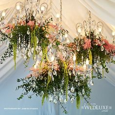 cool vancouver wedding Say no to bare chandeliers! Dress them up with some pretty florals. #weddingdesign #bride #weddingsandevents #reception #wedding #instawed #instawedding #party #congrats #celebration #bride #weddingparty #wedding #chandelier #floraldesign #vancouverflorist #photography #flowers #weddingdecor #weddinginspiration #instawedding #weddingflowers by @flowerzinc  #vancouverflorist #vancouverwedding #vancouverweddingdecor #vancouverwedding