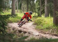 Want To Try Barcelona Extreme Adventure Sports? The list Is Here, Read Ahead Visit Barcelona, How To Memorize Things, Things To Come, Bungee Jumping, Wakeboarding, Extreme Sports, Rock Climbing, Cool Bikes, Nice View